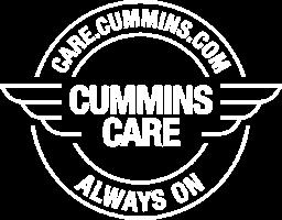 Logo protection Cummins